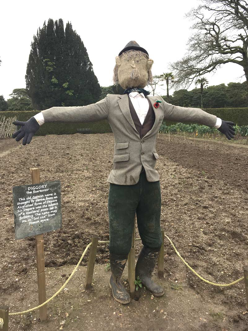 Diggory, Heligan's resident scarecrow
