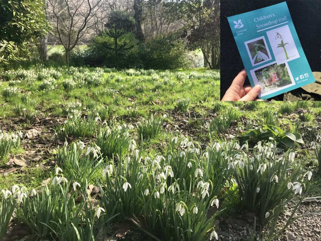 Follow the Trelissick Gardens' children's snowdrop trail during February Half Term