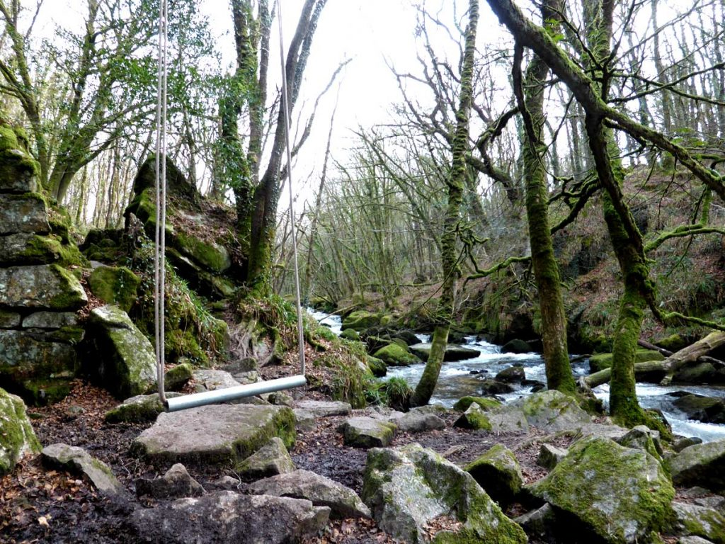 Rope swing at Golitha Falls, Cornwall